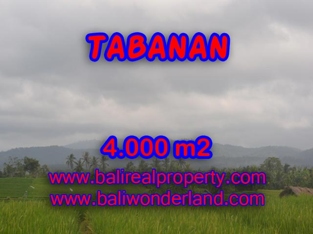 Land in Bali for sale, Terrific view in TABANAN BARAT – TJTB084