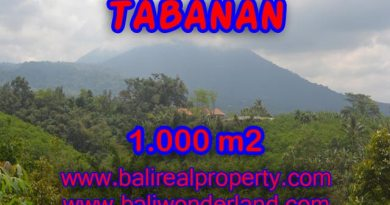 Land in Bali for sale, Stunning view in Tabanan Bali – TJTB078