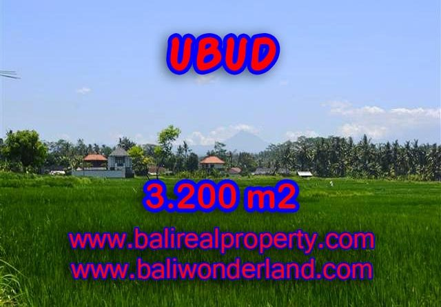 Land in Ubud Bali for sale, Outstanding view in Ubud Center – TJUB385