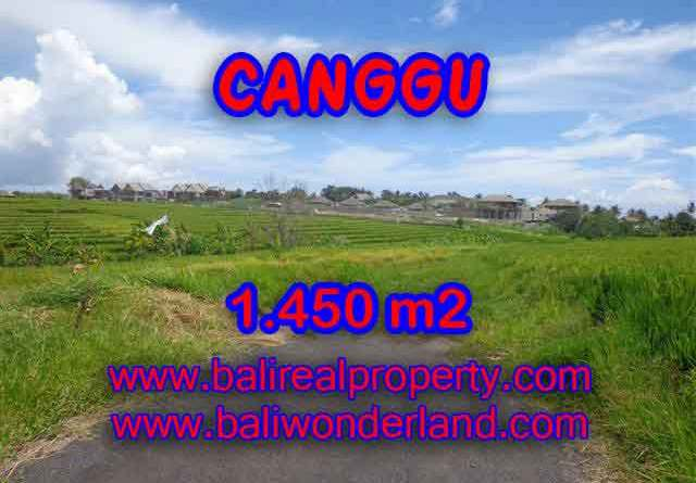 Land for sale in Bali, spectacular view in Canggu Bali – TJCG137