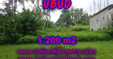Land for sale in Bali, spectacular view in Ubud Bali – TJUB399