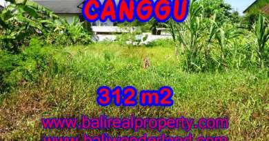 Beautiful Land for sale in Bali, Garden view in Canggu Bali – TJCG145