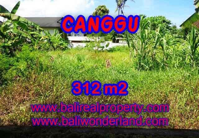 Beautiful Land for sale in Bali, Garden view in Canggu Bali – TJCG145
