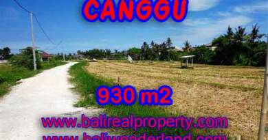 Astonishing Property for sale in Bali, LAND FOR SALE IN CANGGU Bali – TJCG146