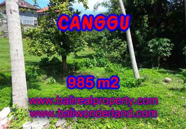 Outstanding Property for sale in Bali, land for sale in Canggu Bali – TJCG147