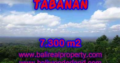 Land in Tabanan Bali for sale, Outstanding view in Tabanan Penebel – TJTB123