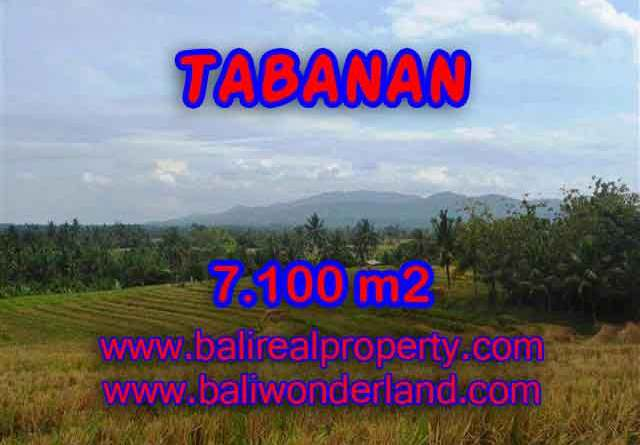 Extraordinary Land for sale in Tabanan Bali, paddy fields, mountain and ocean view in Tabanan Selemadeg – TJTB125