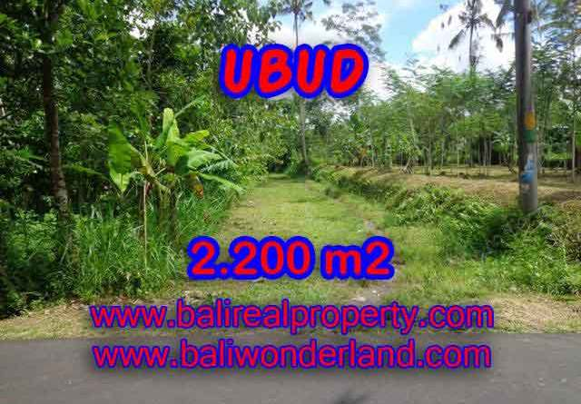 Astonishing Property for sale in Bali, LAND FOR SALE IN UBUD Bali – TJUB408