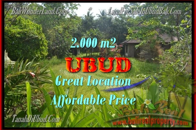 Land for sale in Ubud Bali, Astounding view in Ubud Center – TJUB429