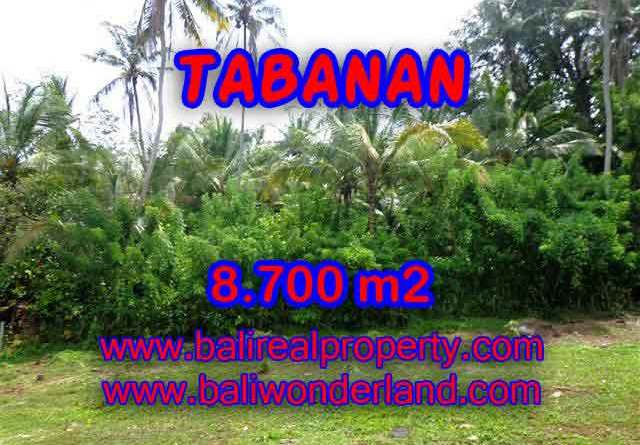 Exotic LAND FOR SALE IN TABANAN Bali, Garden and river view in Tabanan Selemadeg – TJTB115
