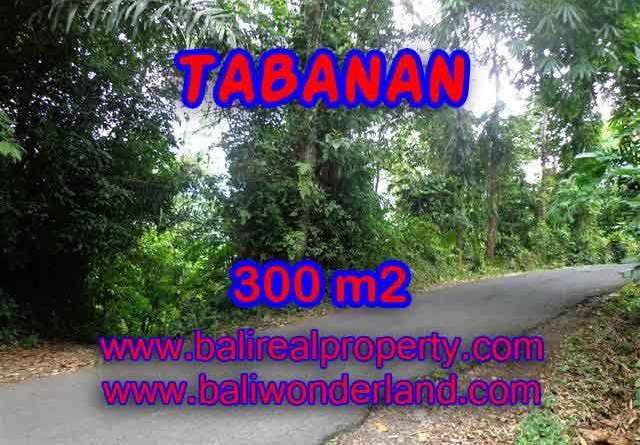 Land for sale in Tabanan Bali, Great view in Tabanan Selemadeg – TJTB116