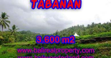 Land for sale in Tabanan, Stunning view in Tabanan Selemadeg Bali – TJTB117