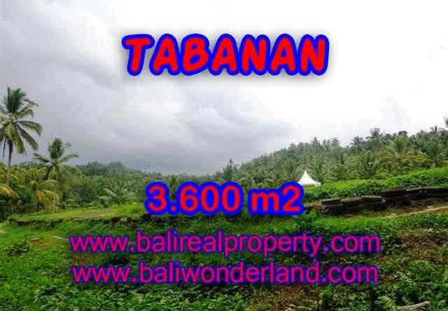 Land for sale in Tabanan, Stunning view in Tabanan Selemadeg Bali – TJTB117