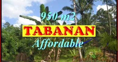 Astonishing Property for sale in Bali, LAND FOR SALE IN TABANAN Bali – TJTB146