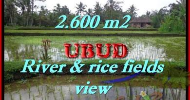 Spectacular Property in Bali, land for sale in Ubud Tegalalang – TJUB421
