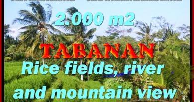 Outstanding Property for sale in Bali, land for sale in Tabanan Bali – TJTB147