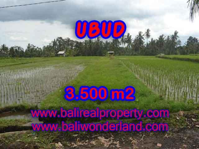 Land in Bali for sale, extraordinary view in Ubud Pejeng – TJUB395