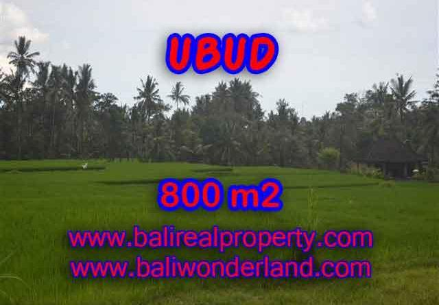 Land in Bali for sale, fantastic view in Ubud Bali – TJUB396