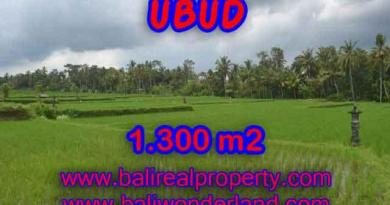 Land for sale in Bali, exotic view in Ubud Pejeng Bali – TJUB394