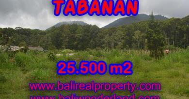 Beautiful Land for sale in Bali, forest and valley view in Tabanan Bali – TJTB085