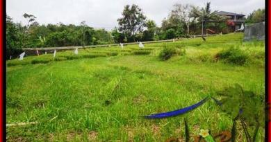 Affordable PROPERTY 1.000 m2 LAND IN CANGGU FOR SALE TJCG161