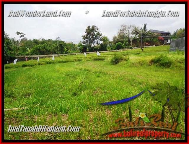 FOR SALE Affordable LAND IN CANGGU BALI TJCG161