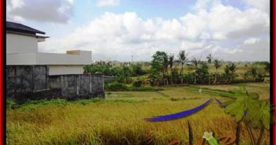 FOR SALE Affordable LAND IN CANGGU BALI TJCG163