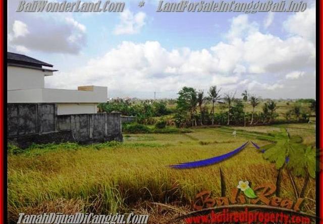 FOR SALE Affordable LAND IN CANGGU BALI TJCG163