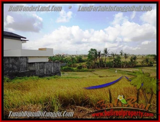 Magnificent PROPERTY CANGGU 500 m2 LAND FOR SALE TJCG163