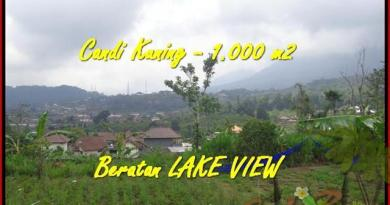 Magnificent PROPERTY LAND FOR SALE IN TABANAN TJTB180