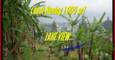 Beautiful LAND SALE IN Tabanan Bedugul BALI TJTB181