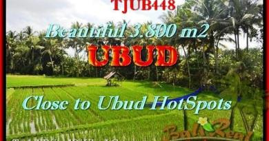 3.800 m2 LAND FOR SALE IN UBUD TJUB448