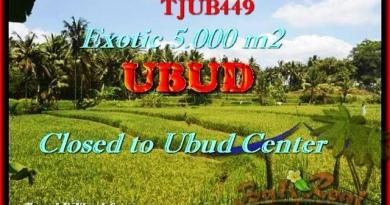 Exotic PROPERTY Sentral Ubud BALI LAND FOR SALE TJUB449