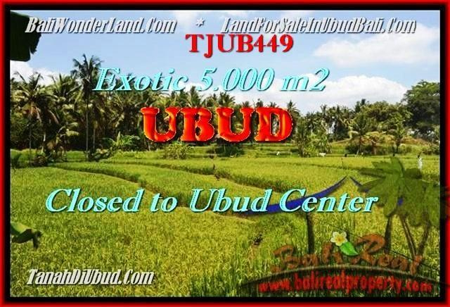 FOR SALE Exotic PROPERTY 5.000 m2 LAND IN UBUD TJUB449