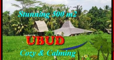 FOR SALE Exotic LAND IN Ubud Payangan TJUB459