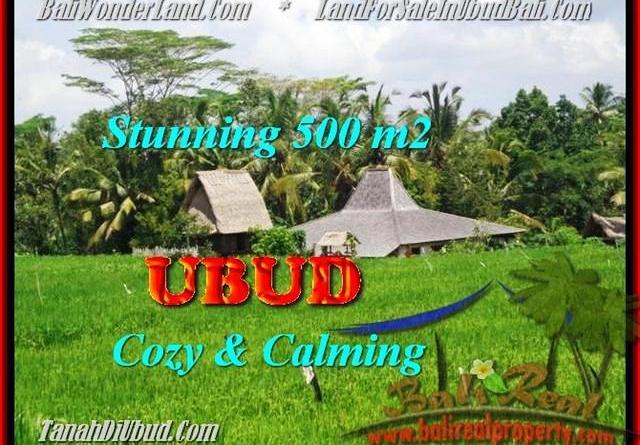FOR SALE Exotic LAND IN Ubud Payangan TJUB459