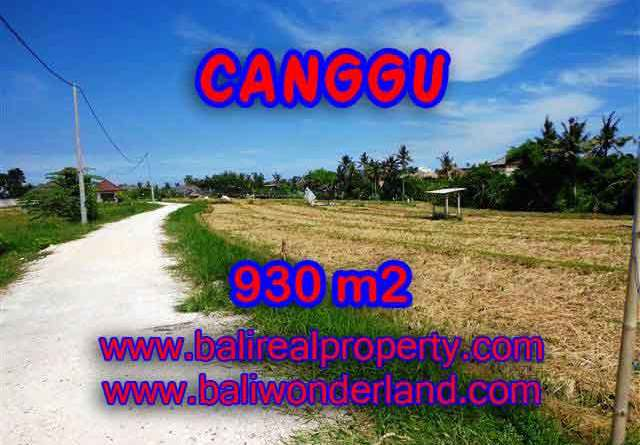Exotic LAND IN Canggu Pererenan FOR SALE TJCG146