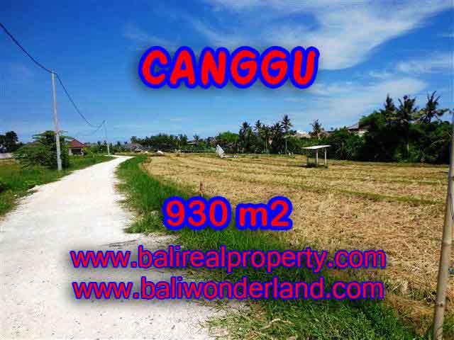 Magnificent LAND IN Canggu Pererenan FOR SALE TJCG146