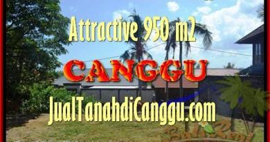 FOR SALE LAND IN CANGGU BALI TJCG153