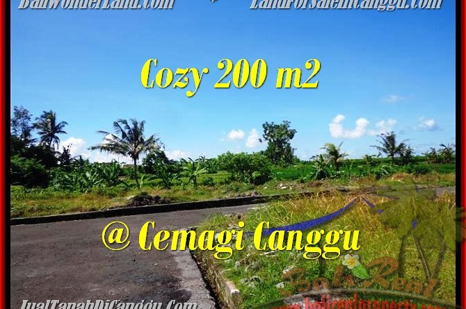 FOR SALE LAND IN CANGGU BALI TJCG171