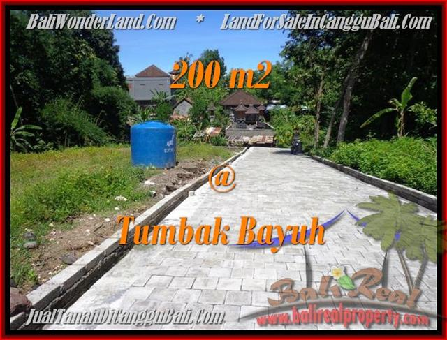 Magnificent PROPERTY 200 m2 LAND SALE IN CANGGU TJCG172