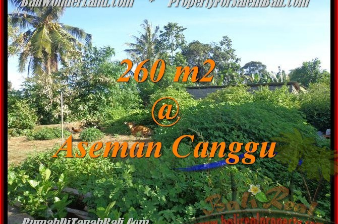 Beautiful LAND SALE IN Canggu Brawa TJCG174