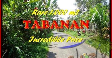 FOR SALE Magnificent PROPERTY 1.000 m2 LAND IN TABANAN BALI TJTB171