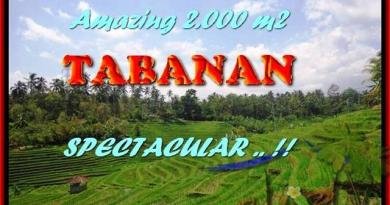 Exotic PROPERTY 2.000 m2 LAND SALE IN TABANAN BALI TJTB172