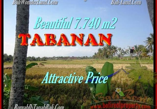 Affordable PROPERTY TABANAN BALI 7.740 m2 LAND FOR SALE TJTB173