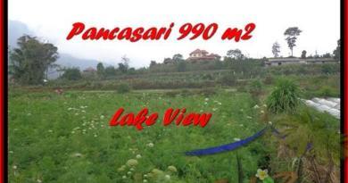 Beautiful 990 m2 LAND IN TABANAN BALI FOR SALE TJTB174
