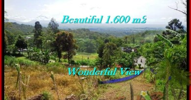 Beautiful PROPERTY TABANAN LAND FOR SALE TJTB194