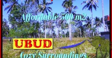 Affordable PROPERTY 500 m2 LAND IN UBUD BALI FOR SALE TJUB433