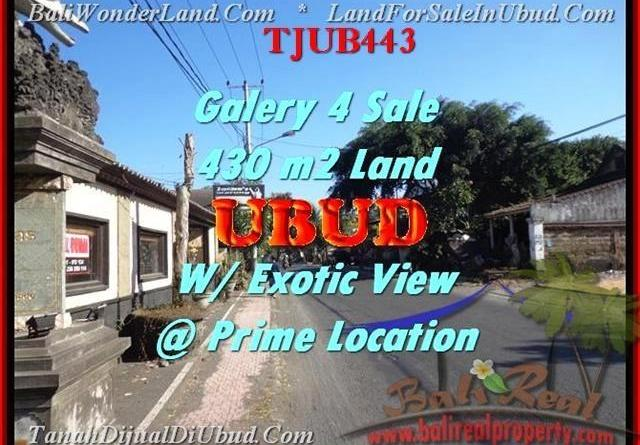 Exotic PROPERTY 430 m2 LAND IN UBUD BALI FOR SALE TJUB443