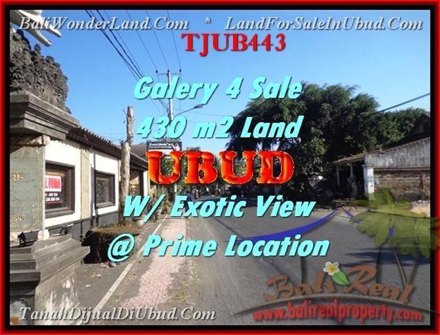 Beautiful PROPERTY UBUD BALI 430 m2 LAND FOR SALE TJUB443